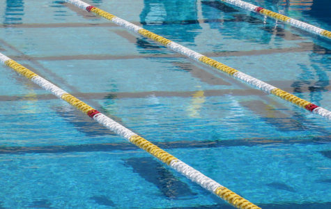 """Swimming isn't that hard…"""