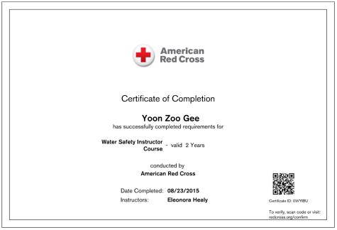 WSI Red Cross Certificate