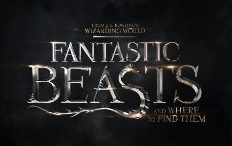 Fantastic Beasts and Where to Find Them: Everything You Need to Know